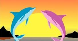 Dolphins clip art the school mascot